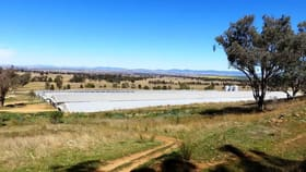Rural / Farming commercial property for sale at 2797 Manilla Road Attunga NSW 2345