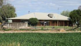 Rural / Farming commercial property for sale at 2456 KERANG-MURRABIT ROAD Murrabit VIC 3579
