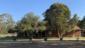 Rural / Farming commercial property for sale at 6176 Barham Road Wakool NSW 2710