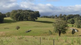 Rural / Farming commercial property for sale at Healy Street Niangala NSW 2354