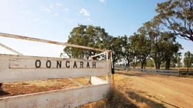 Rural / Farming commercial property for sale at Oongarah Pallamallawa NSW 2399