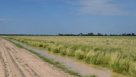 Rural / Farming commercial property for sale at 'Malabar' 2012 Wilby Wilby Road Walgett NSW 2832