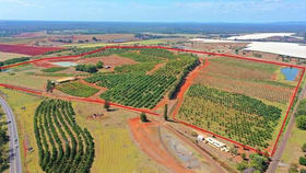 Rural / Farming commercial property for sale at 40 Avocado  Drive South Isis QLD 4660