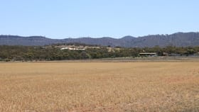 Rural / Farming commercial property for sale at Sections 227, 229, 250 & 252 Pepper Tree Lane/Quarry Road Quorn SA 5433