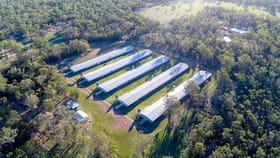 Rural / Farming commercial property for sale at 57 Zischkes Road Coominya QLD 4311