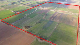 Rural / Farming commercial property for sale at 240 Lancaster-Mooroopna Road Lancaster VIC 3620