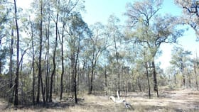 Rural / Farming commercial property for sale at Lot 12 Robbos Road Chinchilla QLD 4413