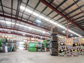 Factory, Warehouse & Industrial commercial property for lease at Tenancy  1, 2 Jabez Street Marrickville NSW 2204