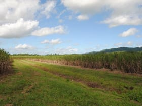 Rural / Farming commercial property for sale at Warrubullen Road Warrubullen QLD 4871