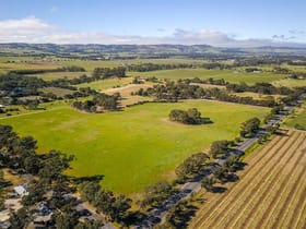 Rural / Farming commercial property for sale at 191 Samuel Road Nuriootpa SA 5355