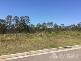 Development / Land commercial property for sale at Lot 32 Formosa Street Pimpama QLD 4209