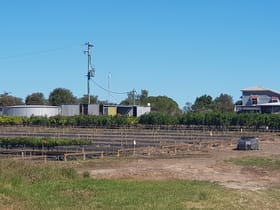 Rural / Farming commercial property for sale at 182 Ten Mile Road Sharon QLD 4670