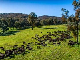 Rural / Farming commercial property for sale at 1570 Moyhu Meadow Creek Road Meadow Creek VIC 3678