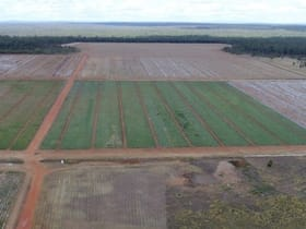 Rural / Farming commercial property for sale at 1605 and 1262/Burra Burri Creek Road Chinchilla QLD 4413