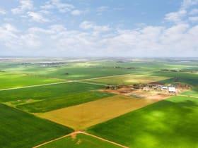 Rural / Farming commercial property for sale at 43 Harvey Road Korunye SA 5502