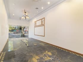 Medical / Consulting commercial property for lease at 2/137 Macleay Street Potts Point NSW 2011