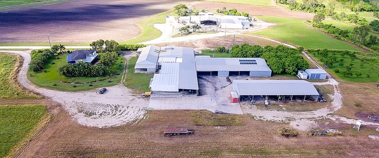 Rural / Farming commercial property for sale at Bruce H'way & East Euri Creek Bowen QLD 4805