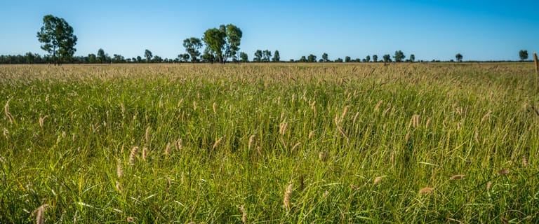 """Livestock commercial property for sale at """"Tomoo Station"""" Tomoo Road Mitchell QLD 4465"""