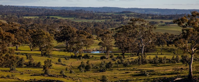 Rural / Farming commercial property for sale at Red Creek 1 Keyneton Road Keyneton SA 5353