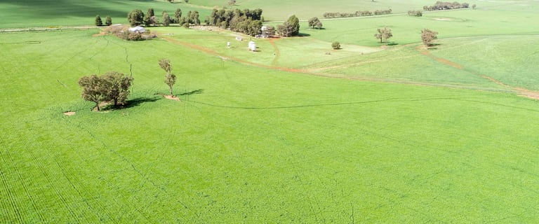 Rural / Farming commercial property for sale at 1085 Berthong Road Berthong NSW 2594