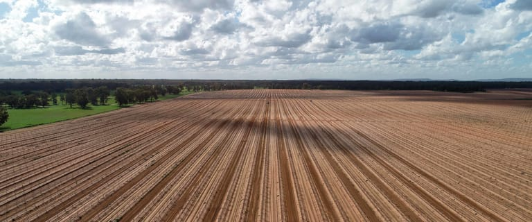 Rural / Farming commercial property sold at Euroley NSW 2700