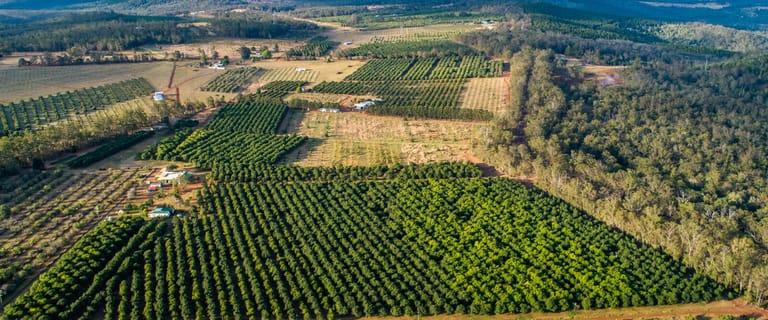 "Rural / Farming commercial property for sale at ""Wodonga Park"" 45 Mount Binga Road Mount Binga QLD 4306"