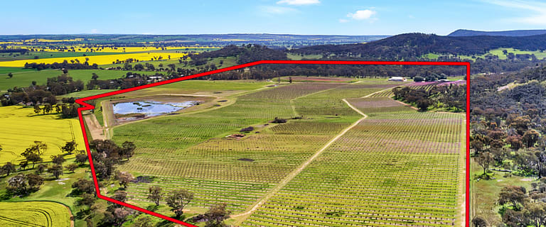 Rural / Farming commercial property for sale at 528 Jones Road Mount Bruno VIC 3675