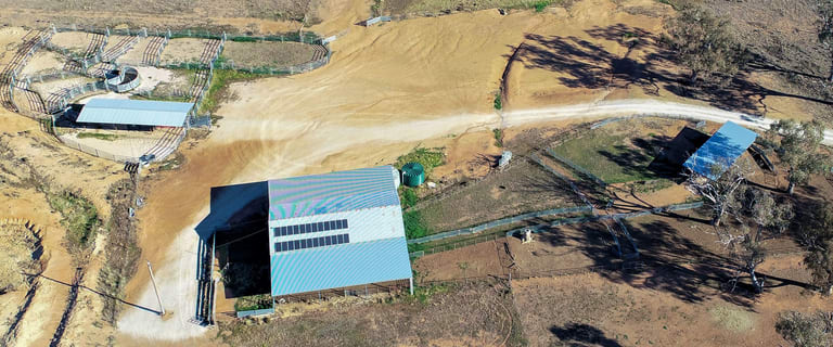 Rural / Farming commercial property for sale at Geurie NSW 2818