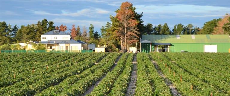 Rural / Farming commercial property for sale at 2373 Cowalla Road Cowalla WA 6503