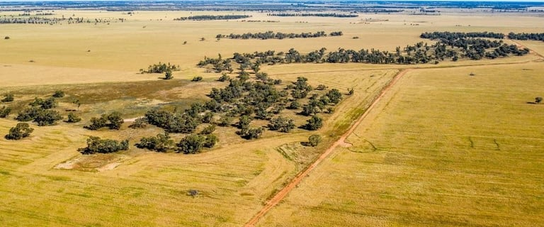 Rural / Farming commercial property for sale at Bonnars Lane Coleambally NSW 2707