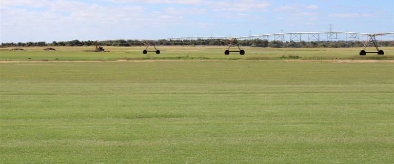 Rural / Farming commercial property for sale at 3705 Brand Highway Mimegarra Dandaragan WA 6507
