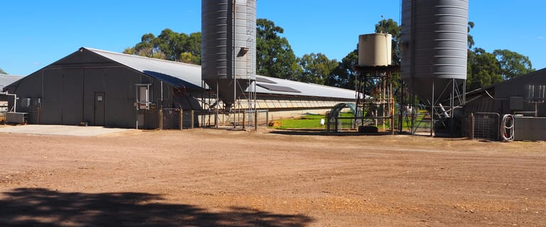 Rural / Farming commercial property for sale at Broiler Farm, 12 Tunney Rd Oldbury WA 6121