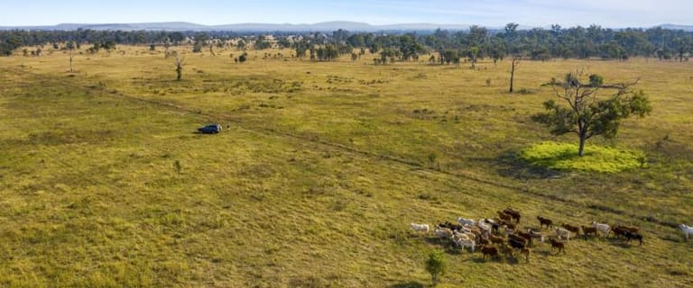 Rural / Farming commercial property for sale at WHOLE OF PROPERTY/0 Lanyon Road South Yaamba QLD 4702