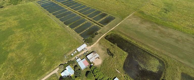 Rural / Farming commercial property for sale at Lot 6 & 7 Webb Road Majors Creek QLD 4816