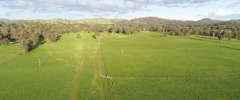 Rural / Farming commercial property for sale at 1091 Humula Road Tarcutta NSW 2652