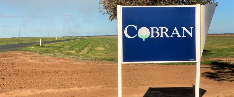 Rural / Farming commercial property for sale at Murrumbidgee River Road Hay NSW 2711