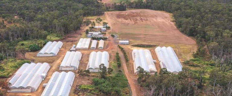 Rural / Farming commercial property for sale at 2034 Rosedale Road Bundaberg QLD 4670