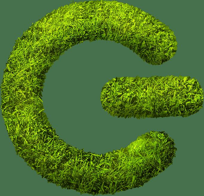 Grassp Health   Crunchbase