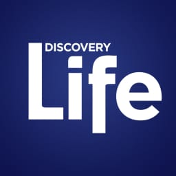 Discovery communications ipo date