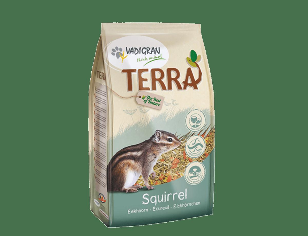 TERRA Ecureuil