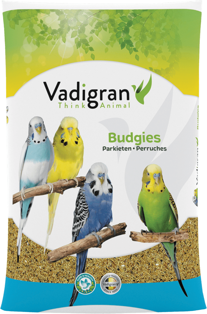Vadigran Basic Budgies