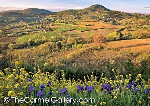 Tuscan_fields_ezywaf