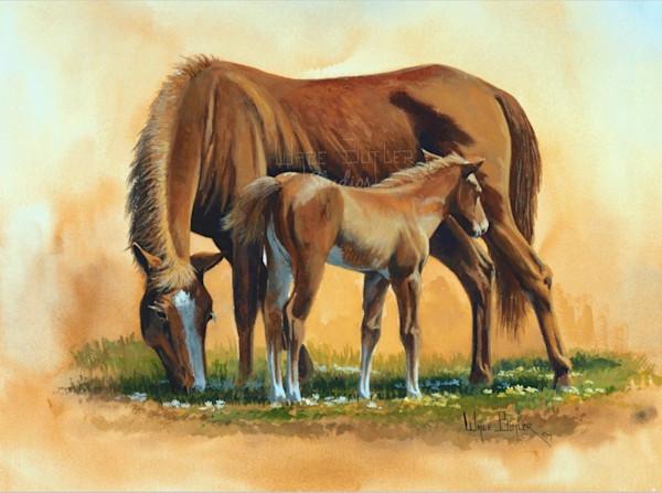 Mare_and_foal_qrohhz