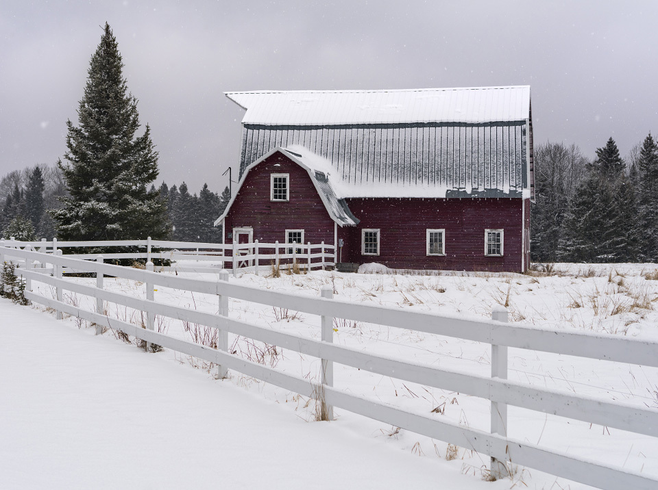 Winter_barn_caistv