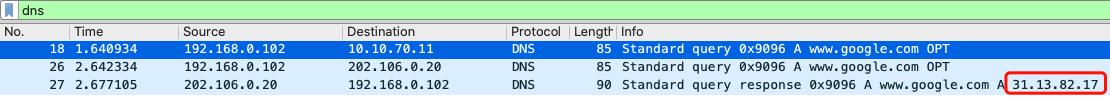 dns-wrong-response