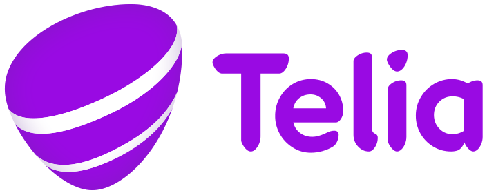 Project Governance with Telia IT | Match My Thesis