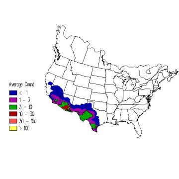 Cactus Wren winter distribution map