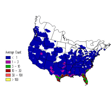 Blue-winged Teal winter distribution map