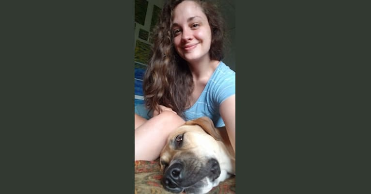 Photo of Daisy Maizy Racine, a Great Pyrenees and American Bully mix in California, USA