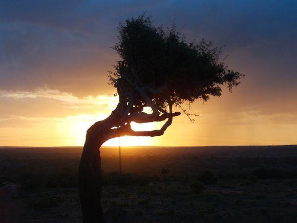Nightfall in Africa